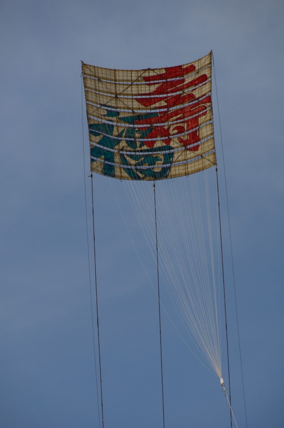Zama Kite Festival 01
